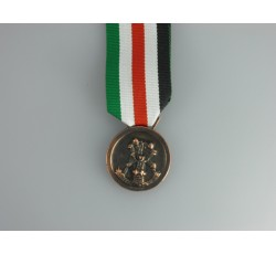 German Italian African Campaign Medal